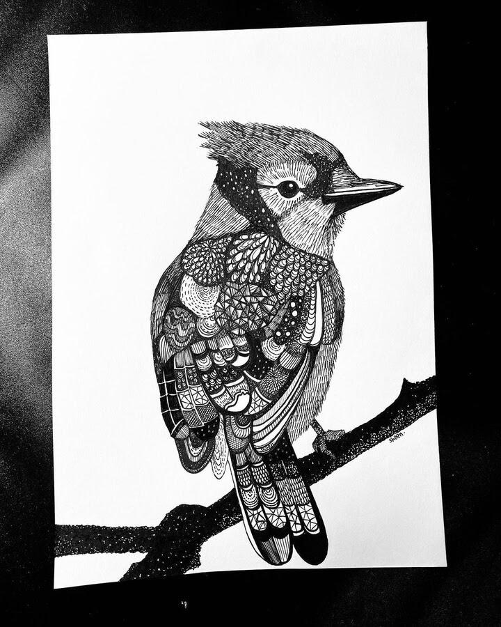 10-Textured-bird-Sheen-www-designstack-co