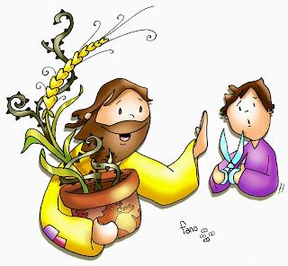Resultado de imagen para parábola del trigo y la cizaña,
