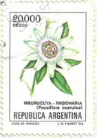 Selo Passiflora coerulea