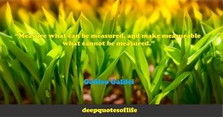 """""""Measure what can be measured, and make measurable what cannot be measured.""""  ― Galileo"""