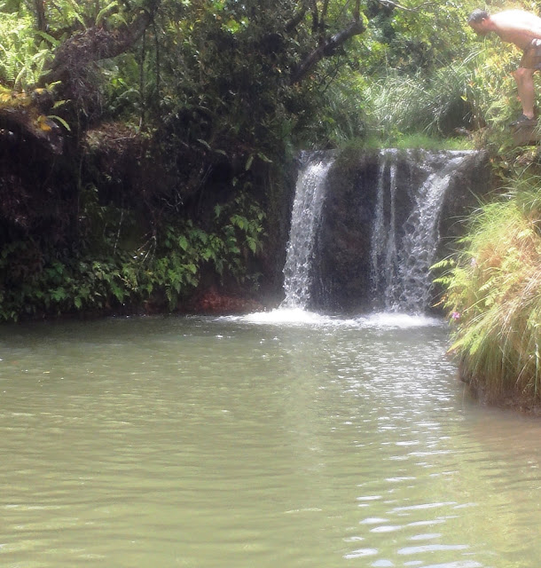 medleybyoanasinga.com-personal-blog-hawaii-vacation-kauai-island-off-road-adventure-princeville-ranch-9
