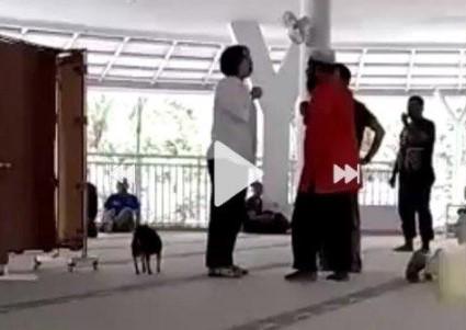 Wanita Bawa Anjing Ke Dalam Masjid Terima Batunya - Video Lengkapnya