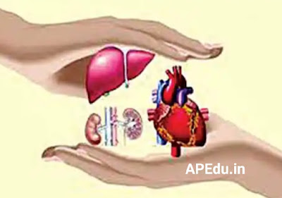 Growing awareness on organ transplantation in Telugu states