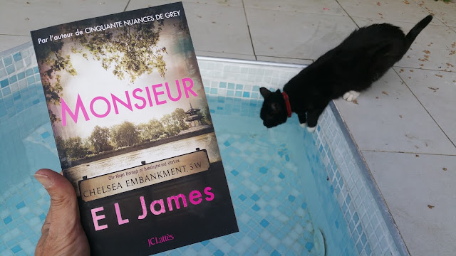 Monsieur EL James 50 nuances de Grey avis chronique happybook happymanda livre addict