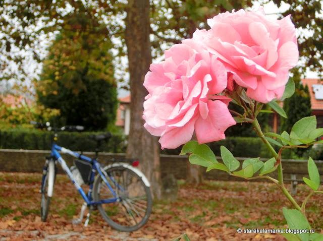 велодорожки будапешт, веломаршруты венгрия, венгрия вело