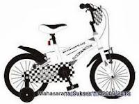 Sepeda Anak Evergreen EG1261 Value 12 Inci