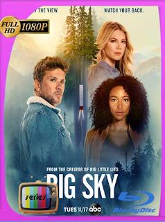 Big Sky (2020) Temporada 1 (14/16) 1080p Latino [GoogleDrive] [tomyly]