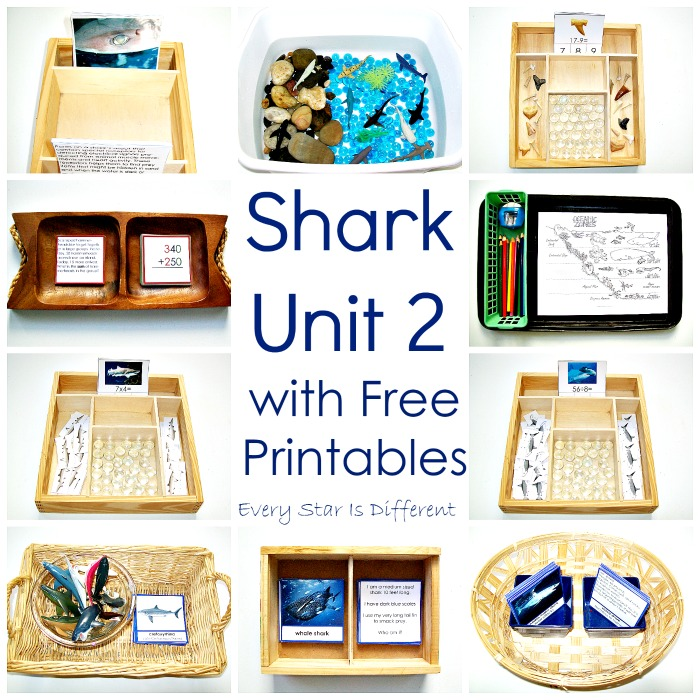 Shark Unit 2 with Free Printables