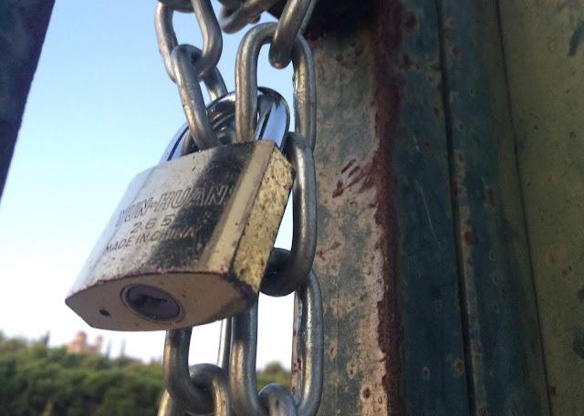Άρθρο των μαθητών του ΓΕΛ Ερμιόνης: Μέλλον που πασχίζει να ανθίσει