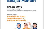 Modul Seri Belajar Mandiri Calon ASN PPPK PGSD 2021