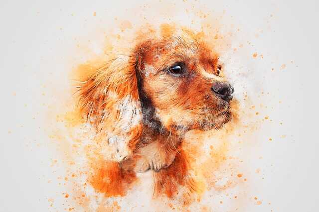 cute puppy cartoon images download