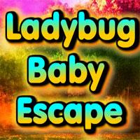 Wow Ladybug Baby Escape