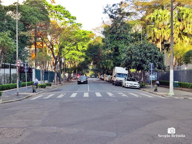 Vista de parte da Avenida Higienópolis - Higienópolis - São Paulo