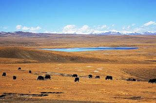 西藏旅遊行程如何安排?