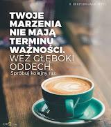 Zostań patronem Igiełka-MB