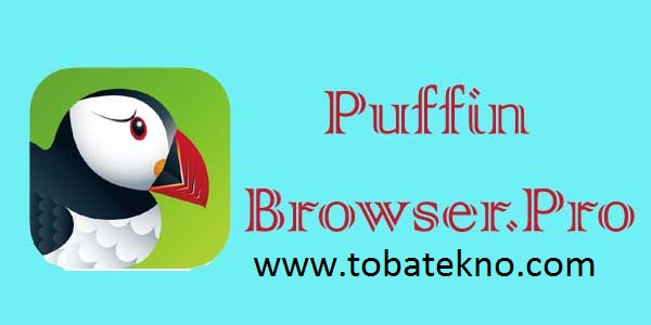 Puffin Browser Pro Apk For Android terbaru 2020