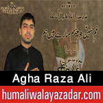http://www.humaliwalayazadar.com/2016/10/agha-raza-ali-nohay-2017.html