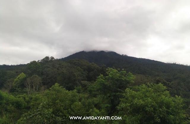 Gunung Buthak dari Ukir Negoro