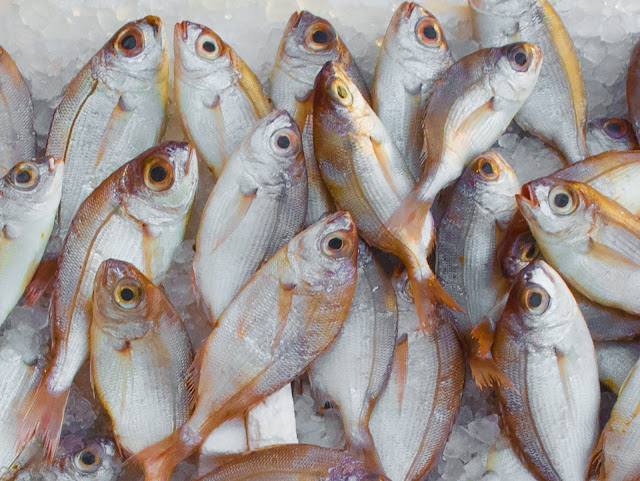 Te decimos cómo identificar el mejor pescado para esta #Cuaresma