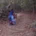 Sufre una aparatosa caída y el casco cumple su función  [video]