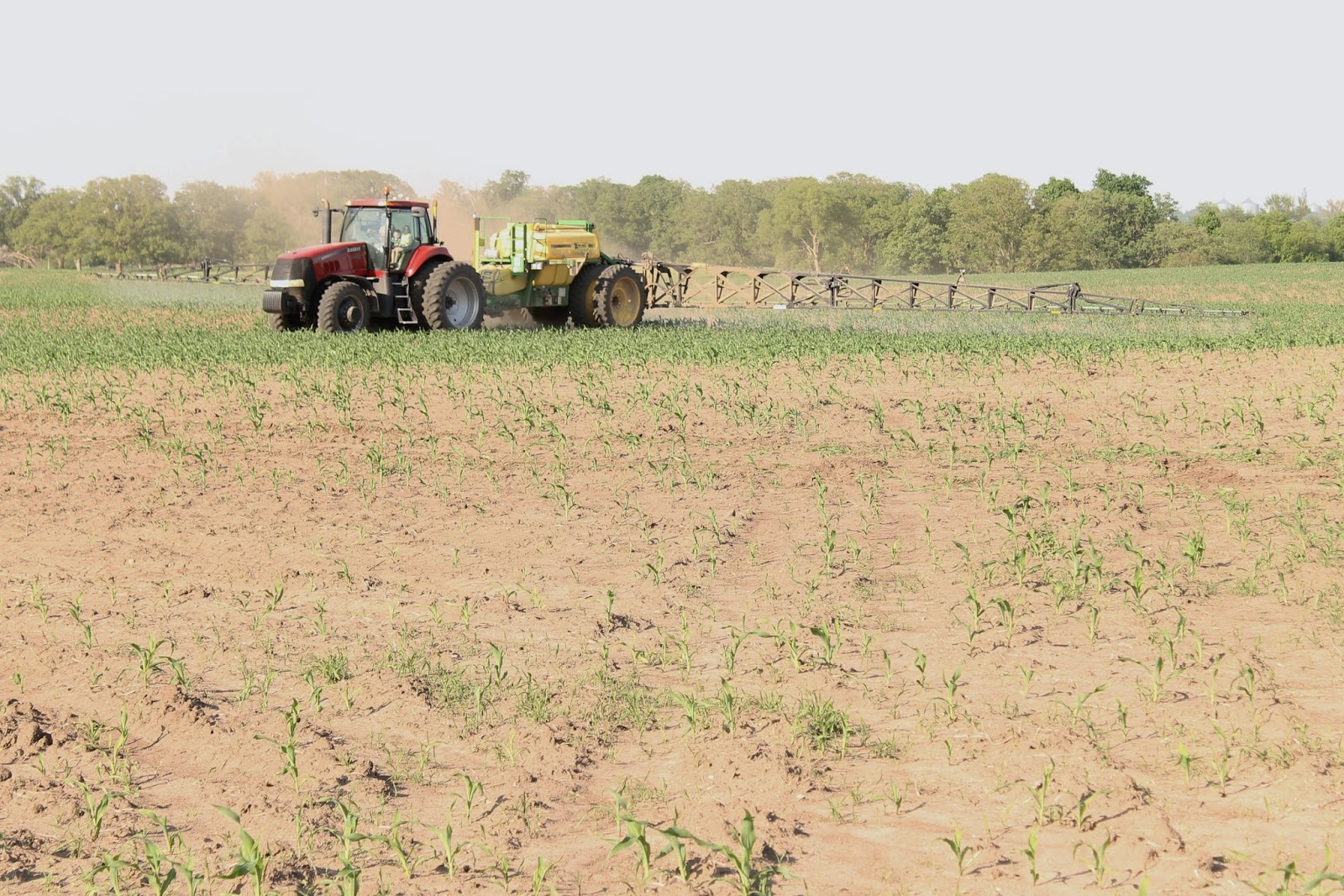Farm Friday Update - Spraying Corn