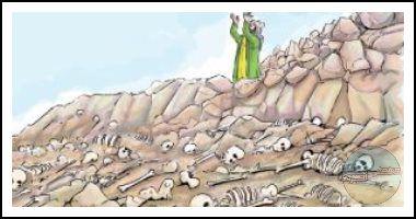 السرطان البني إسرائيلي