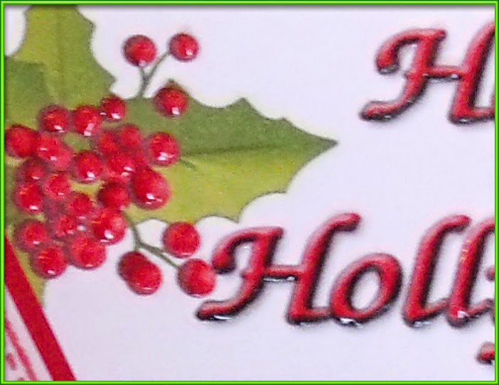 Happy Holly Days, closeup of glossy berries