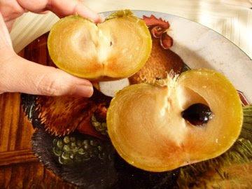 Somosxinkascom Gastronomía
