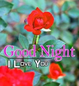 Beautiful Good Night 4k Images For Whatsapp Download 268