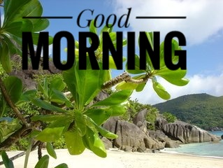 Good morning love WhatsApp Facebook images