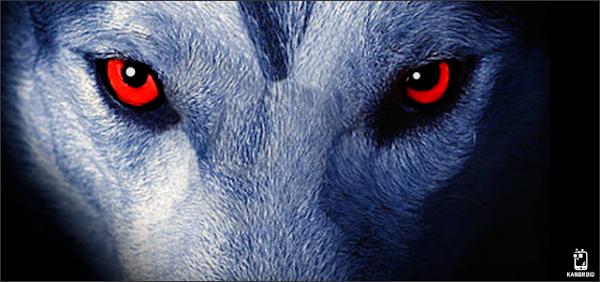 Como instalar The Wolf v1.1 ? - APK Mod [Dinheiro Infinito]