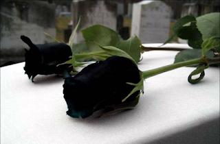 Πέθανε η σπουδαία τραγουδίστρια και ηθοποιός Σωτηρία Λεονάρδου