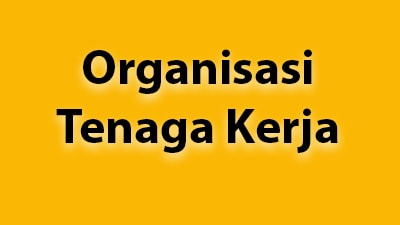 Mengenal Berbagai Model Organisasi Tenaga Kerja