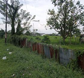 tanah dijual 600 Hektar di Hamparan perak  <del>Rp 80Jt /Hektar</del> <price>Rp. 70 Jt/ Hektar</price> <code>THP-1</code>