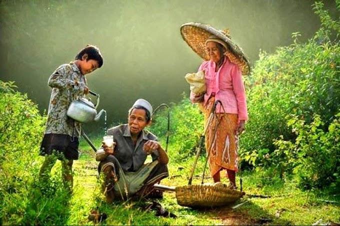 Virus Korona dan Orang Desa