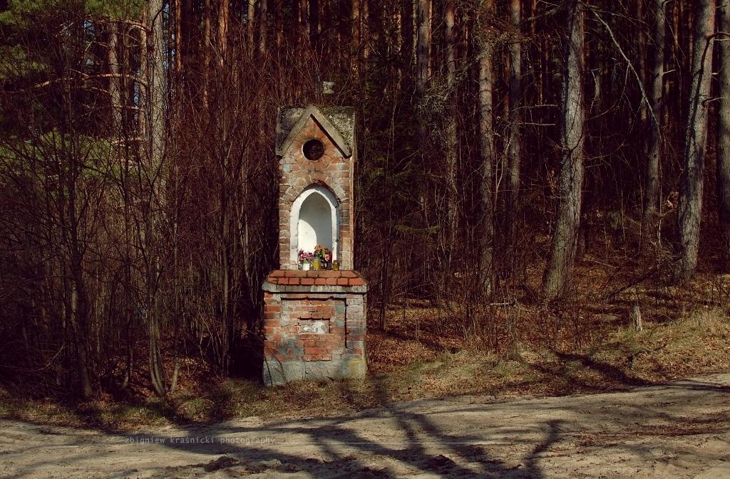Kapliczka przydrożna w Orzechowie