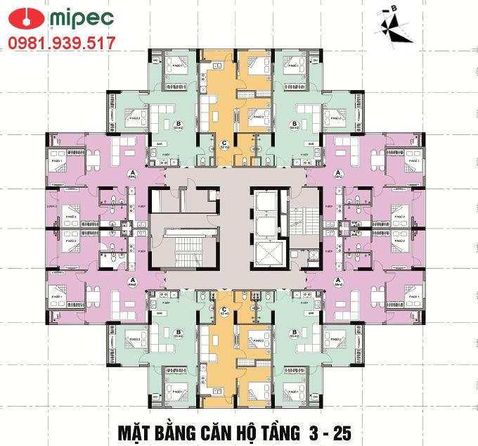 Mặt bằng căn hộ Tòa CT2 Mipec Kiến Hưng Hà Đông