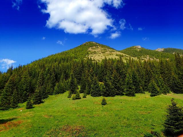 Nad Bobrowiecką Przełęczą góruje oczywiście Bobrowiec