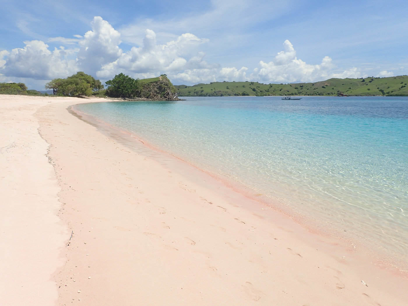 pink beach of komodo island, indonesia