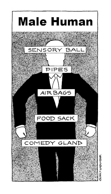 male anatomy cartoon by Gerry Lagendyk