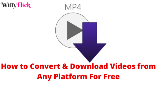How to Convert & Download Videos from Any Platform For Free
