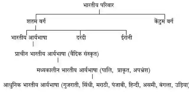 हिंदी भाषा का इतिहास और हिंदी भाषा का विकास