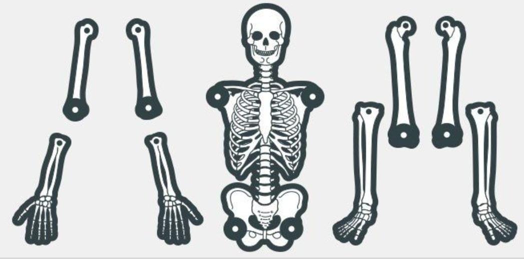 специальных кости вырезать картинки форма ногтей