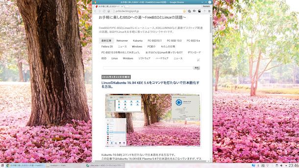Kubuntu 15.06 KDE 5.6環境にGoogle Chromeをインストール。