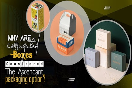 Why Are Corrugated Boxes Considered the Ascendant Packaging Option?