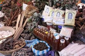Traditional Medicine in India