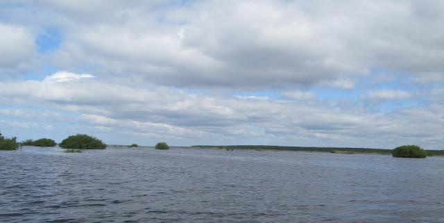 Река в июне