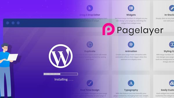 Page Layer Wordpress plugin has security flaw allows hackers to wipe your website