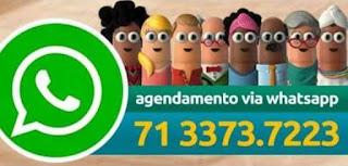 Whatsapp para agendamento da biometria