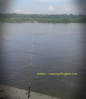 Cara mancing wader beles, di sungai